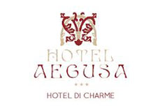 aegusahotel.it_wopt
