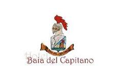baiadelcapitano.it_wopt